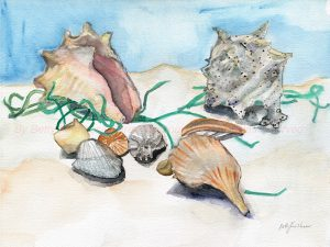 Seashells, a watercolor painting by Betty B. Kirshner